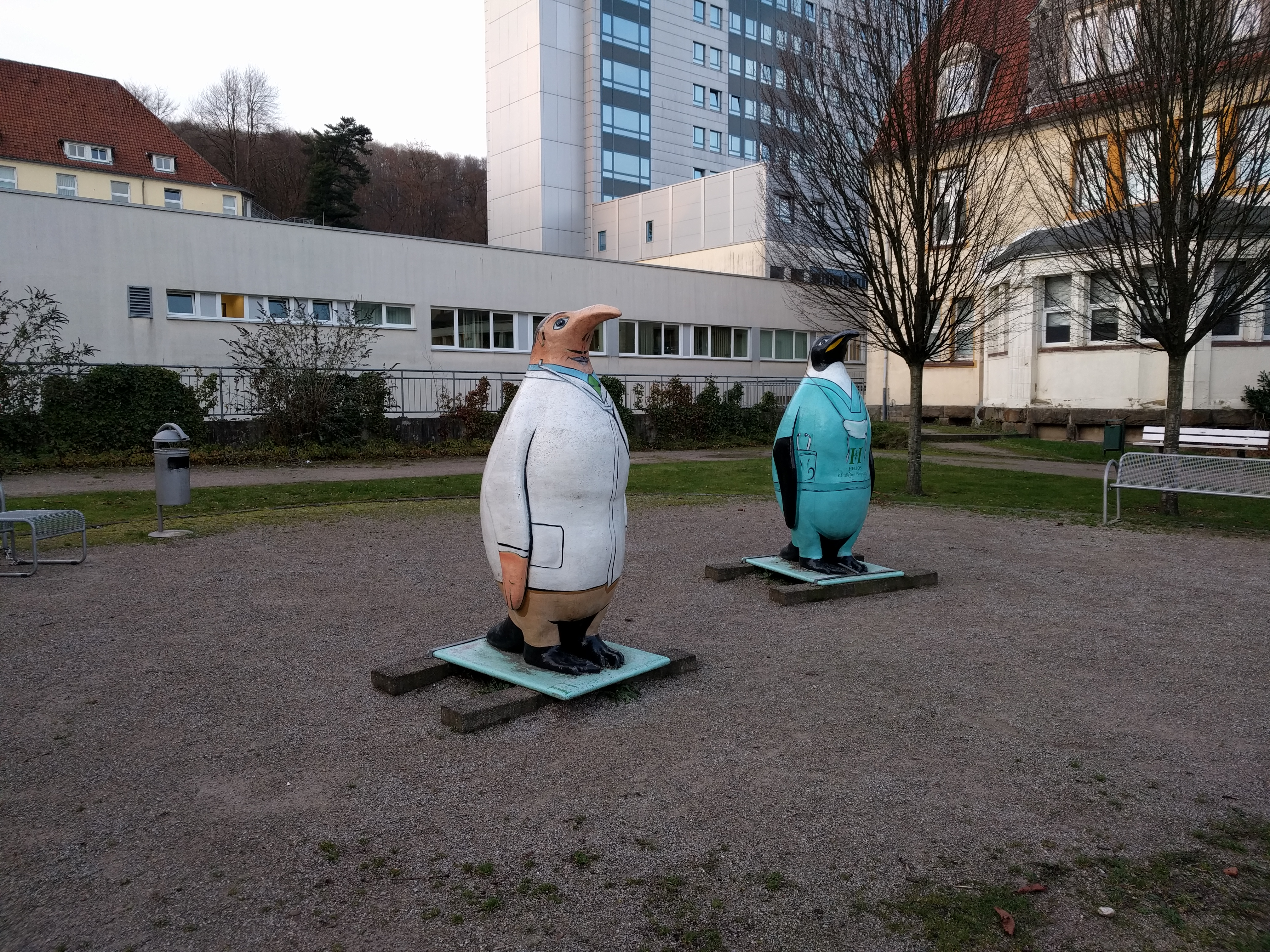 Pinguin am Helios in Wuppertal