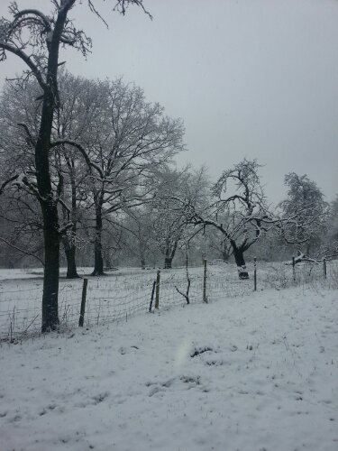 Wetter Bielefeld Ubbedissen